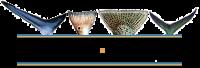 ShirtTails Logo