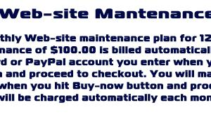 Monthly Web-site Mantenance